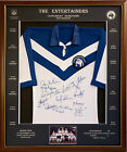 Blazed In Glory - 1980 Canterbury Bulldogs Premiers - NRL Signed & Framed Jersey