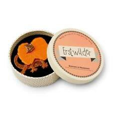 Erstwilder The Mega Bat Brooch Brand New Tags