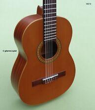 Wie Neu 1/2 Spanische Konzert-Gitarre Kindergitarre Raimundo y Aparicio RT53 Top