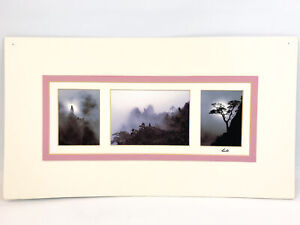 Matted Photos Fog Mist Mountains Silhouette Photography Still Life Nature Trees