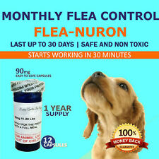 1 Year Supply MONTHLY Flea Control for DOGS 11-20 Lbs. 90 Mg PB 12 Capsules