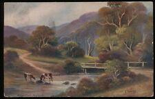 Badger Creek, Healesville, Victoria. 1908 Melbourne cancel on postcard to London