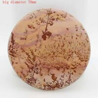 BEAUTIFUL COLOR - PICTURE JASPER PENDANT CAB bead (FREE front DRILL) U0599