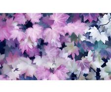 20 PCS Seeds Maple Bonsai Canada Plants Trees Purple Ghost Free Shipping 2019 N