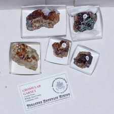Wholesale Flat 5 pieces GROSSULAR GARNET Crystals Coyote Front CA @$12 for sale