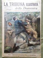 La Tribuna Illustrata 25 Dicembre 1898 Giorgio Grecia Tribuna Campidoglio Lupi