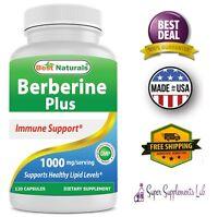 BERBERINE 1000mg 120 Capsules Vitamin C § Zinc Support Immune Health Supplement