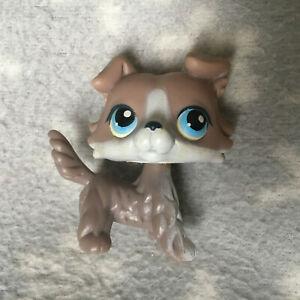 Littlest Pet Shop #67 grey white collie blue eyes HEAD RUST