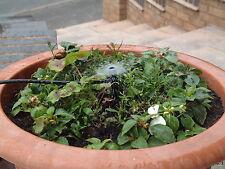 Irrigation Vortex Pot Sprinkler on a Stake, Pk of 5