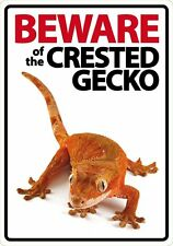 BEWARE of the CRESTED GECKO SIGN! Perfect Gift Idea for reptile lovers!