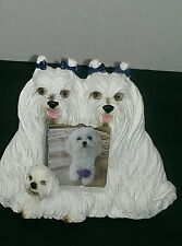 GR DESIGNS 2004 DOGS LOVER WHITE YORKSHIRE TERRIER PICTURE PHOTO FRAME