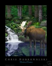 "NEW! Moose 16x20"" Fine Art Print - Chris Dobrowolski"