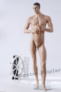 männliche Schaufensterpuppe MH-2 Mannequin  Mann Hautfarbe Schaufensterfigure