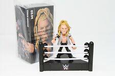 Chris Jericho WWE Slam Loot Crate Exclusive Slam Stars Collectible Figure NEW