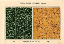 Stampa antica PAVIMENTO A MOSAICO Piastrelle Mattonelle C 746 1910 Antique print