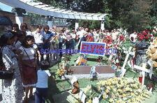 ELVIS PRESLEY GRACELAND 70s DIAPOSITIVE DE PRESSE ORIGINAL VINTAGE SLIDE