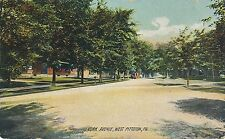 WEST PITTSTON PA – York Avenue Rotograph Postcard - 1909