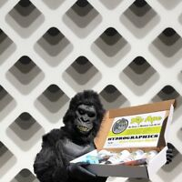 SHADES OF GRAY DIP APE HYDROGRAPHIC WATER TRANSFER HYDRO DIPPING DIP KIT