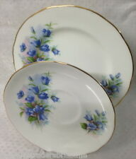 DUCHESS SIDE PLATE + SAUCER BONE CHINA ENGLAND  gorgeous blue bells