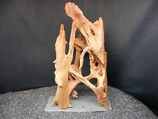ALL NATURAL DRIFTWOOD MOUNTED FOR FISH AQUARIUMS REPTILES TAXIDERMY AQUASCAPING