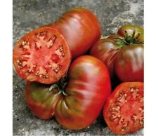 Black Seaman Tomato Seeds, multiple discounts apply