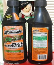2 Spectracide WEED & GRASS KILLER 16 oz Concentrate makes 5 gallons each