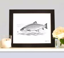 SEA TROUT MOUNTED Game Fish Art Print Picture Present For Angler Fisherman New