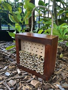 Australian Solitary Bee House | Ladybird and Insect Hotel | Mixed Small Stained