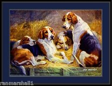 English Print Fox Hound Dogs Art Picture
