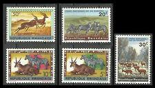 Rwanda Faune Antilopes Zebres Impalas Grand Koudou Antelopes Zebras **1964 1965
