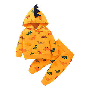 Baby Boys Cartoon Outfits Hooded Tops Long Pants Dinosaurs Print Clothes Set