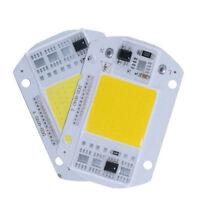 20/30/50W LED Floodlight COB Chip Smart IC Driver Lamp Night Lighting 110V 220V