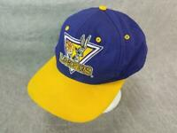 Official NBA Los Angeles Lakers Snapback Hat Vtg Looney Tunes 1993 Bugs Bunny