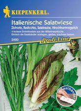 Kiepenkerl - ITALIANA salatwiese Nastro di semi 2480 MIX radicchio, Rucola
