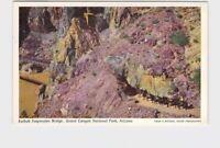 PPC POSTCARD ARIZONA FRED HARVEY GRAND CANYON KAIBAB SUSPENSION BRIDGE TOURISTS