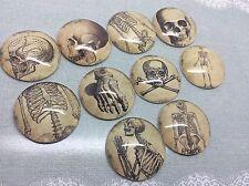 10 X 25 Mm Round anatomie squelette os cabochons pour bijoux, breloques, artisanat