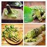 200Seed/Bag Wasabi Japanese Horseradish Vegetable Seeds Bonsai DIY Home Plant