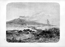 Stampa antica VULCANO ETNA visto da sud Catania Sicilia 1877 Old print