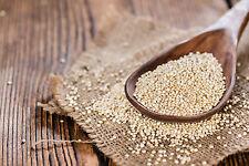1 kg Quinoa - weiß Rohkost Glutenfrei Samen Inkakorn Reis der Inka