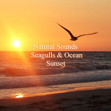 Natural Sounds Seagulls Ocean CD Beach Night Relaxation Stress Relief Sleep Aid