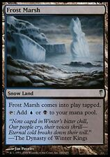 1x Frost Marsh Coldsnap MtG Magic Land Uncommon 1 x1 Card Cards