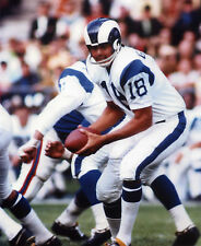 ROMAN GABRIEL LOS ANGELES RAMS 8X10 SPORTS PHOTO (T)