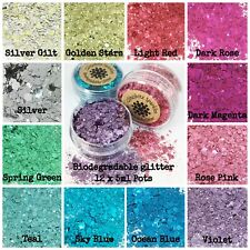 12 x 5mL Pots Biodegradable Cosmetic Bio Glitter mix Festival Makeup Colour
