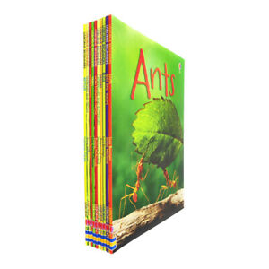 Usborne Beginners Nature 10 Books Collection Set (Ants, Bugs, Spiders,Trees)