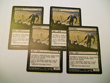 4x MTG KOREAN Radunaghoul-Ghoulraiser Magic EDH ISD Innistrad Asian x4