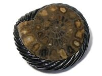 Antique Real Polished Ammonite Fossil Inlaid in Jet Pin Brooch WHITBY