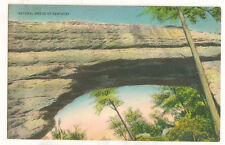 Natural Bridge Of Kentucky Vintage Postcard #47423
