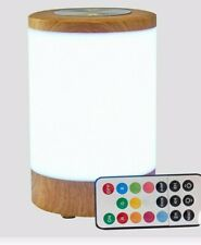 Novelty Table LED Lamps and Lights Clear