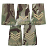 BRITISH ARMY ROYAL WELSH MTP RANK SLIDES-PAIR R WELSH FUSILIERS MULTICAM SLIDES