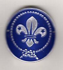 International Scouting Emblem Hiking Stick Medallion, Mint in Pkg!